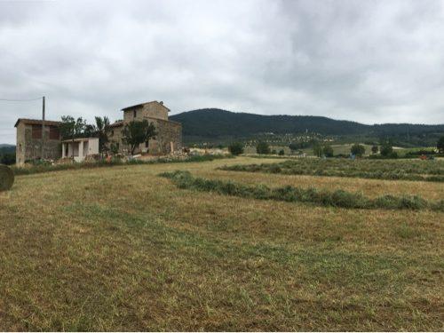 La Toscana di Francesco. Meno dieci.
